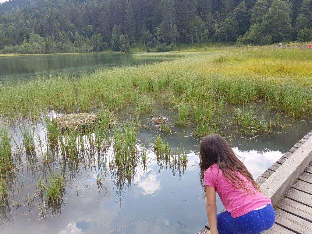 אגם Jägersee