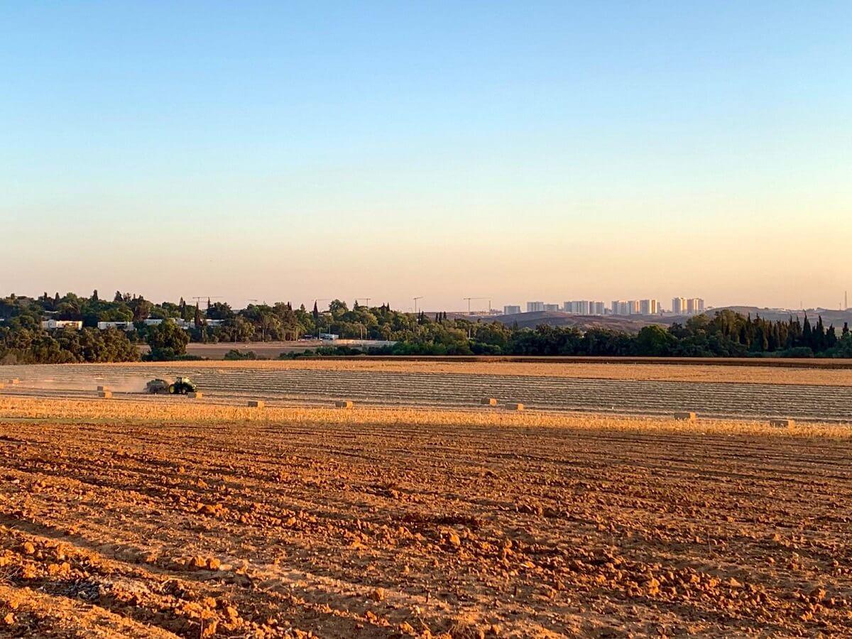 שדות בצפון הנגב