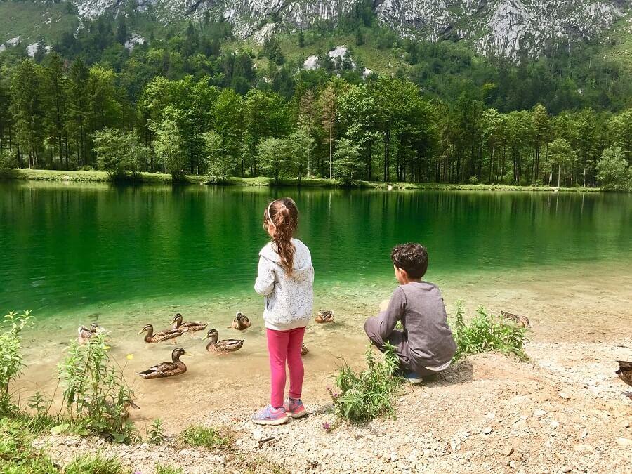 שמורת בלונטאוטל באוסטריה