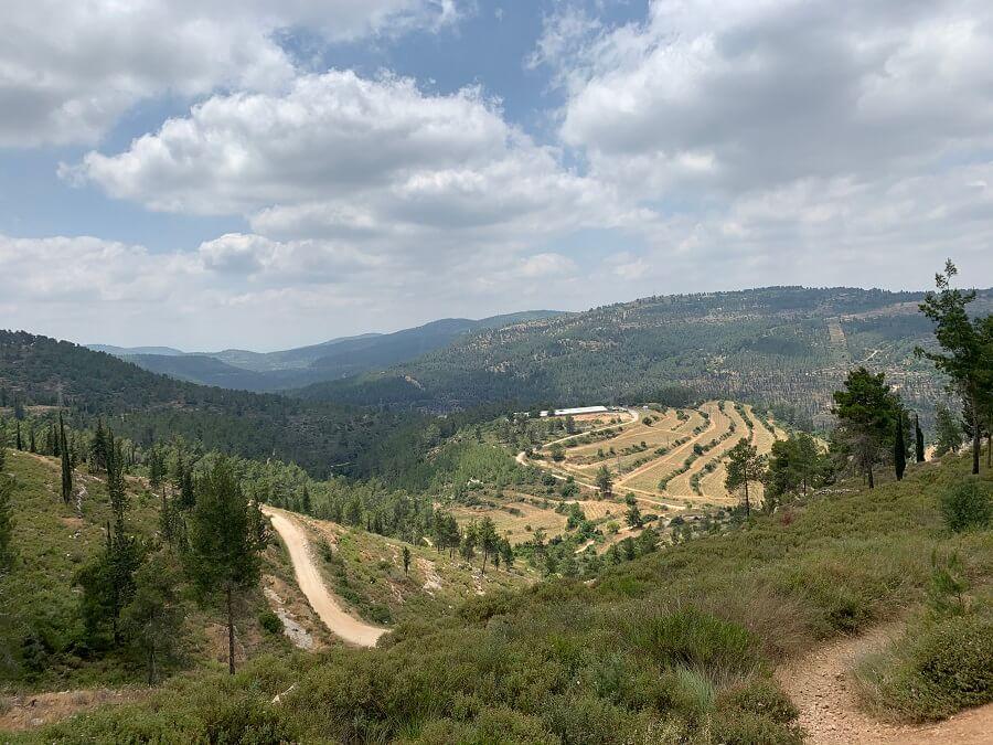 טיול בעמק המעיינות ביער עמינדב