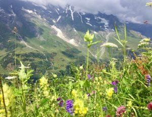 כביש הגרוסגלוקנר באוסטריה
